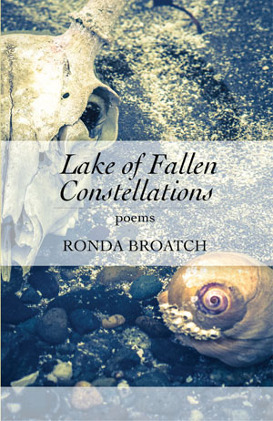 Lake of Fallen Constellations
